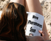 More Pheromones Soon